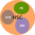Different sources of HSC