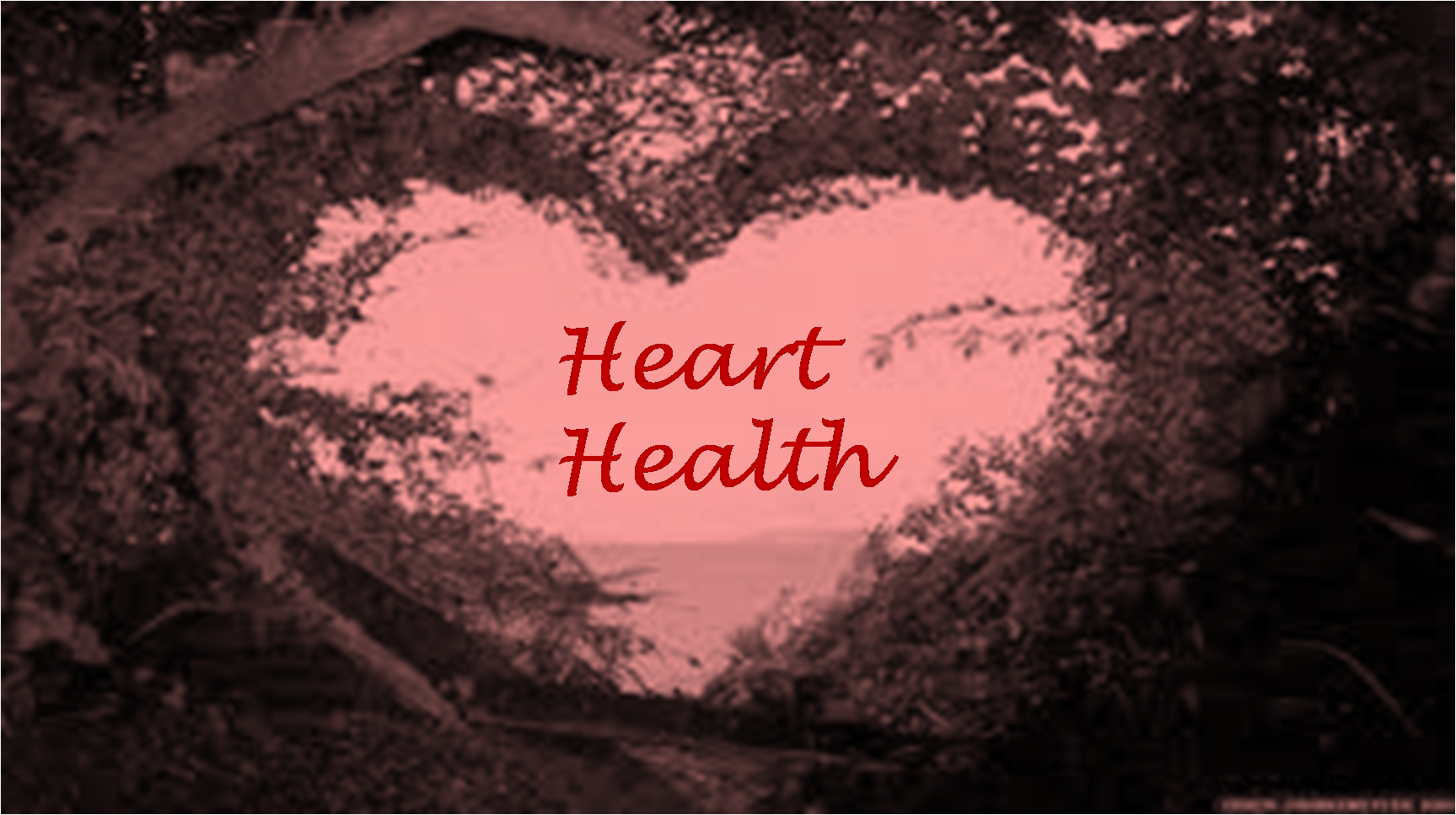 Regular Blood Flow Ensures Good Heart Health