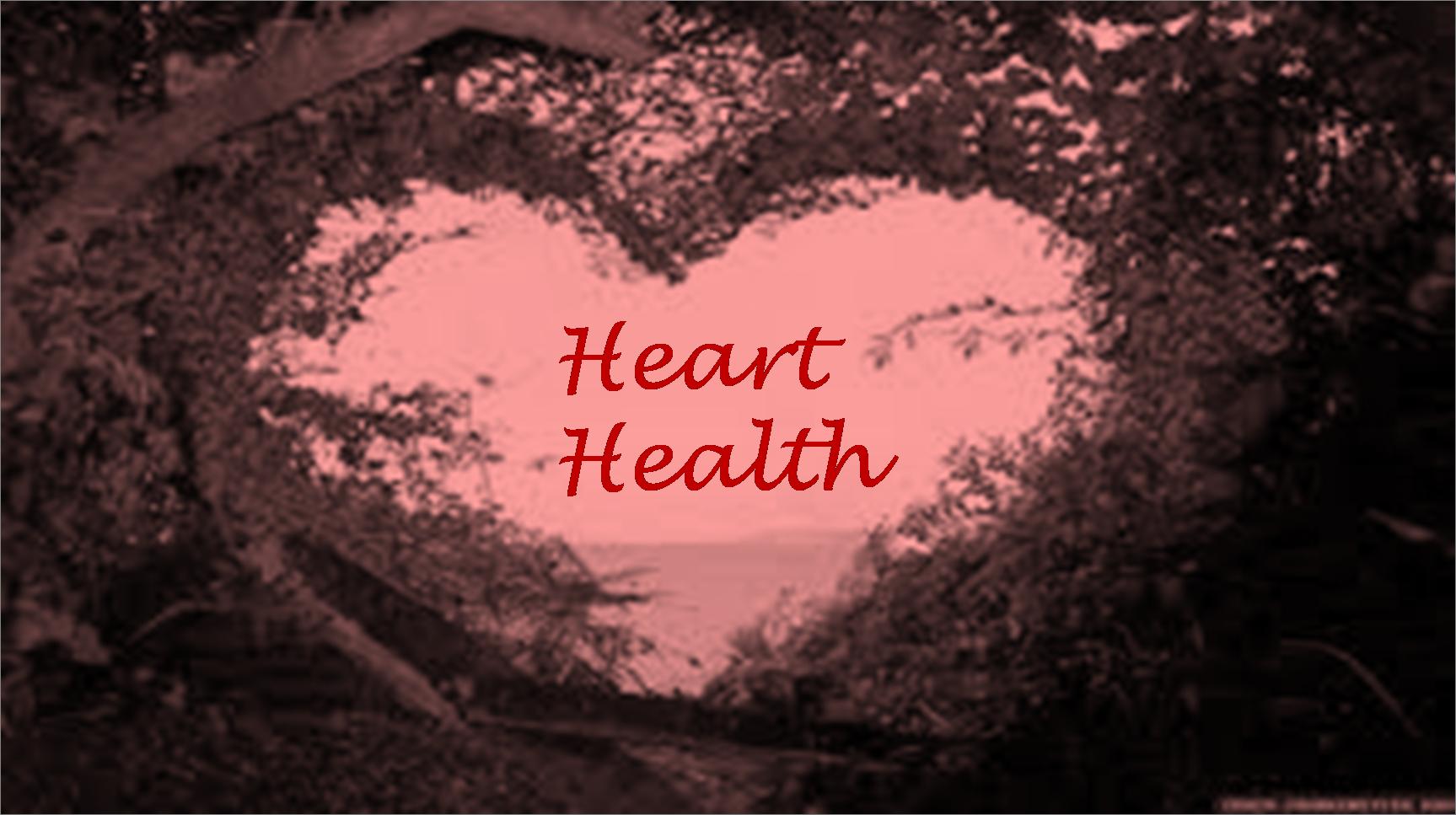 Regular Blood Flow Ensures Good Heart Health